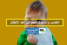 الغضب والسلوك العدواني عند الأطفال